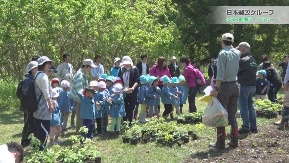 JP子どもの森づくり運動「東北復興グリーンウェイブ」山田町植樹会(2015年5月)