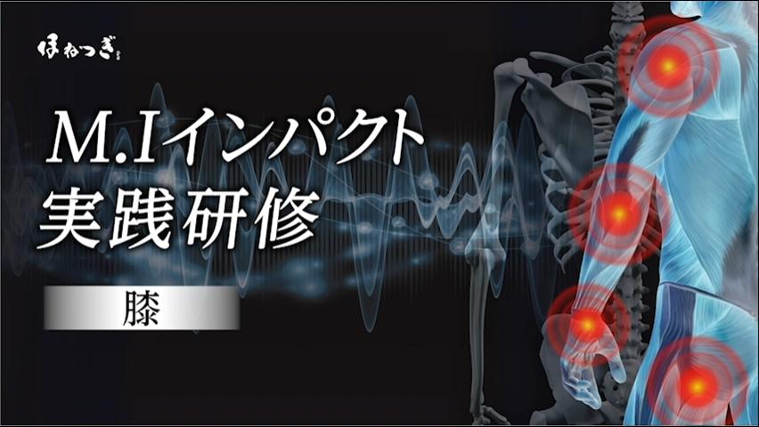 M.I研修(2)膝