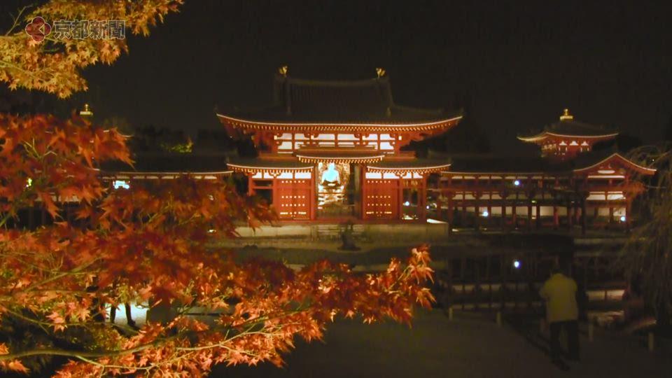 平等院のライトアップ(2019年11月15日 京都府宇治市)