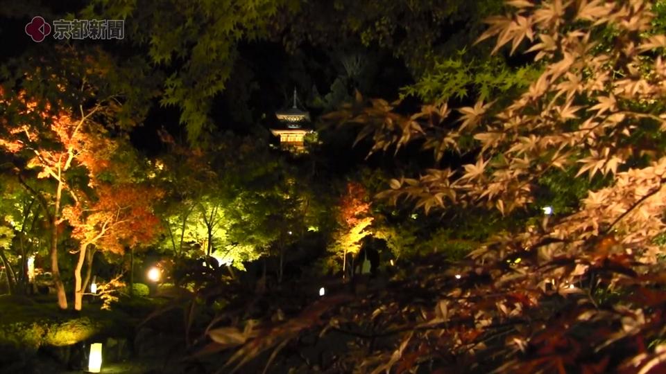 永観堂ライトアップ(2019年11月1日 京都市左京区)