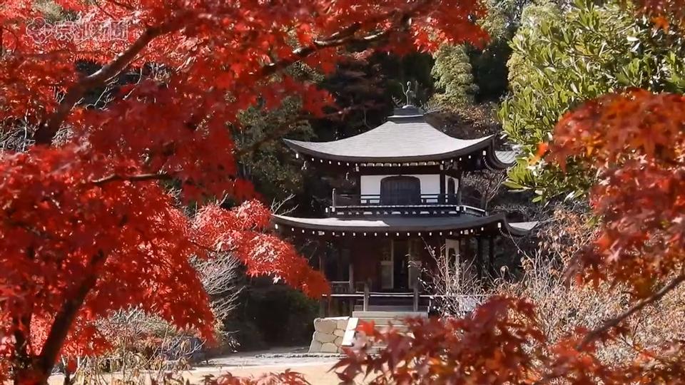 勧修寺(2019年11月21日 京都市山科区)