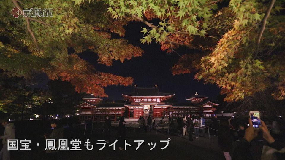 〈秋のしらべ〉平等院(京都府宇治市)