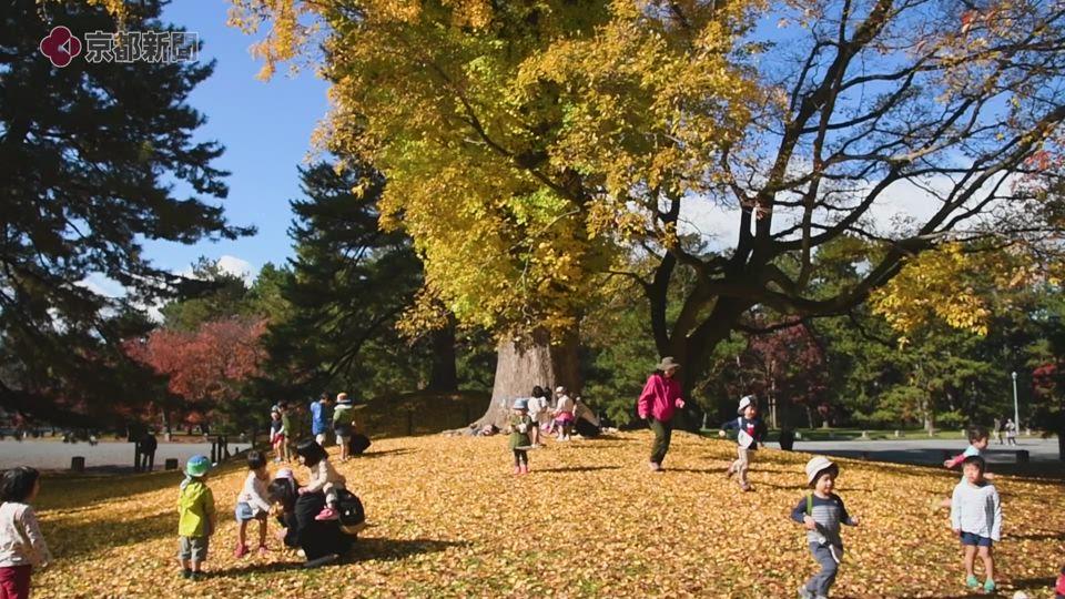 <秋のしらべ>京都御苑(京都市上京区)